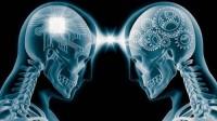 Beyin fəaliyyətini yaxşılaşdıran - 4 maddə