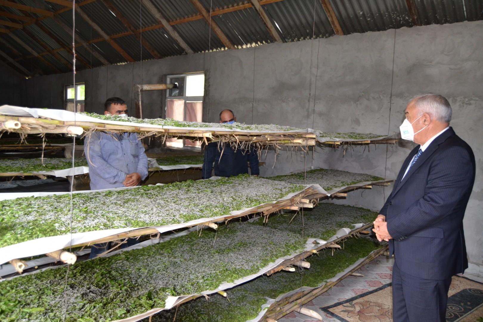 Füzuli Rayon İcra Hakimiyyətinin başçısı Alı Alıyev, barama saxlanılan məntəqələrdə oldu-