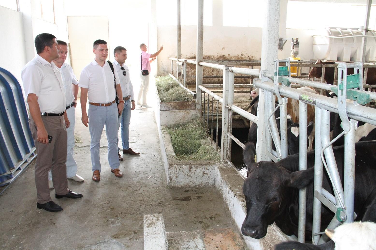Kuban Dövlət Aqrar Universitetinin əməkdaşları ADAU-da olublar