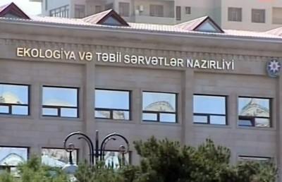 Xətai rayonunda ağacların dibinə dizel yanacağı tökülüb - Nə məqsədlə ?..