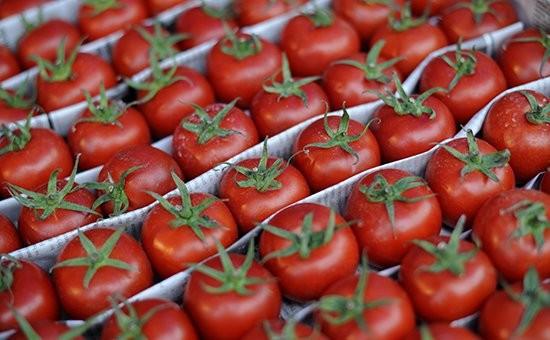 Qeyri-neft sektoru üzrə ixracda birinci yeri pomidor tutur