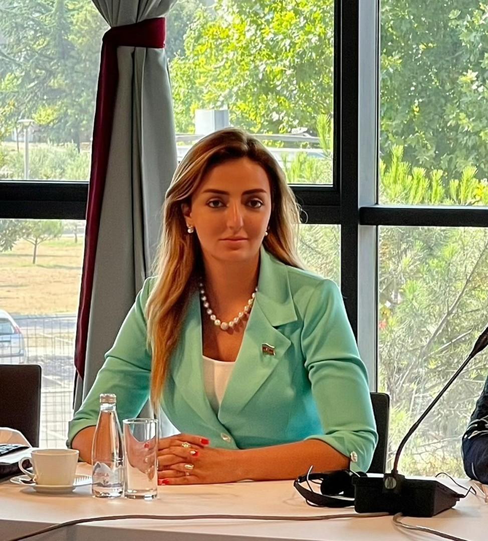 Deputat Tolerantlıq və Sülh Beynəlxalq Parlamentin 6-cı plenar sessiyasında iştirak edir